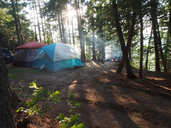 very large serviced campsite suitable for tenting and surrounded by forest.